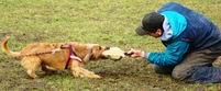 FOTOGALERIE ... trénink obran v Babic� ch 10.3.2009